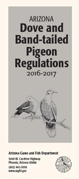 Yuma dove hunting arizona hunting regulations for Arizona fishing regulations